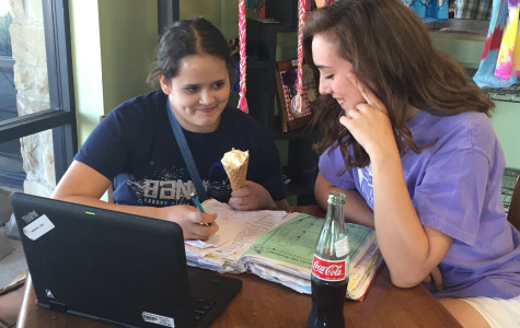 Homework Help finishes the year with success