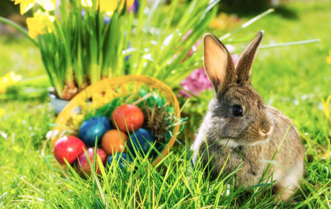 Things to do this Easter weekend