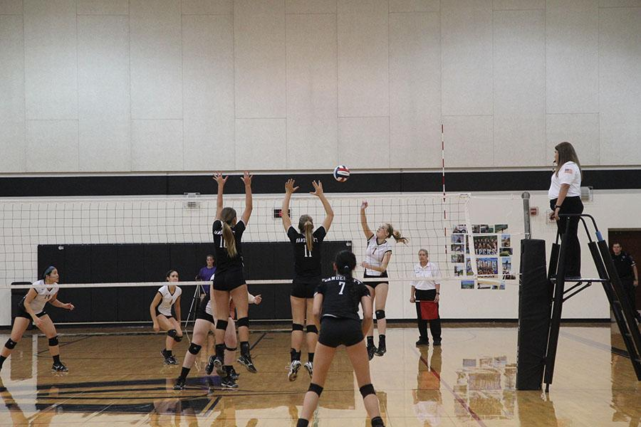 Volleyball competes in last regular game of the season tonight