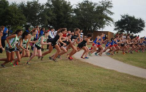 Cross  country girls place first at regionals