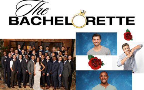 A letter to Bachelor Nation