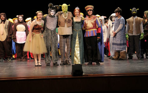 Shrek: The Musical Review