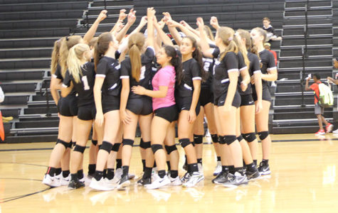 Vandy Volleyball, 'Here We Go Again!'