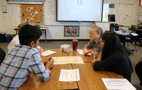 IB program offers different curriculum for students