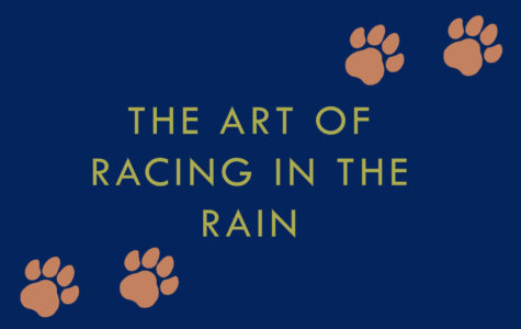 Book and movie review: 'The Art of Racing in the Rain'
