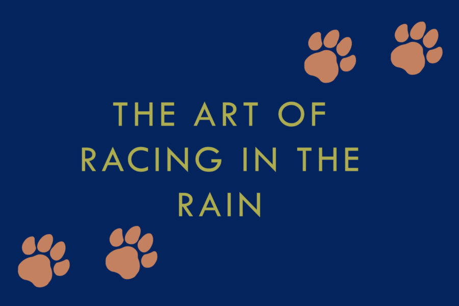 %22The+Art+of+Racing+in+the+Rain%22+will+pull+at+your+heartstrings%2C+both+the+movie+and+the+book.
