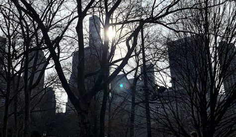 A view of high-rise Manhattan from behind the trees of Central Park.