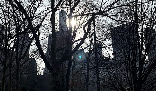 A view of Manhattan from Central Park.
