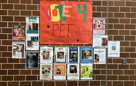 Student council hangs up candidacy posters promoting pet election and fundraiser