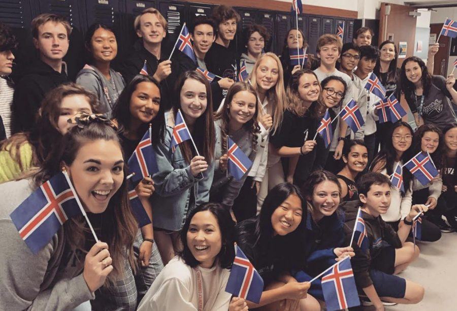 Students of Ms. Houston's travel group pose with Icelandic flags.