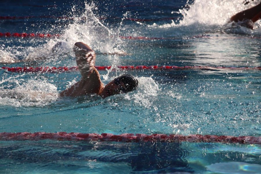 Viper swim team competes at last year's first meet of the season.