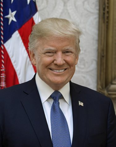 Official portrait of President Donald J. Trump in the White House.