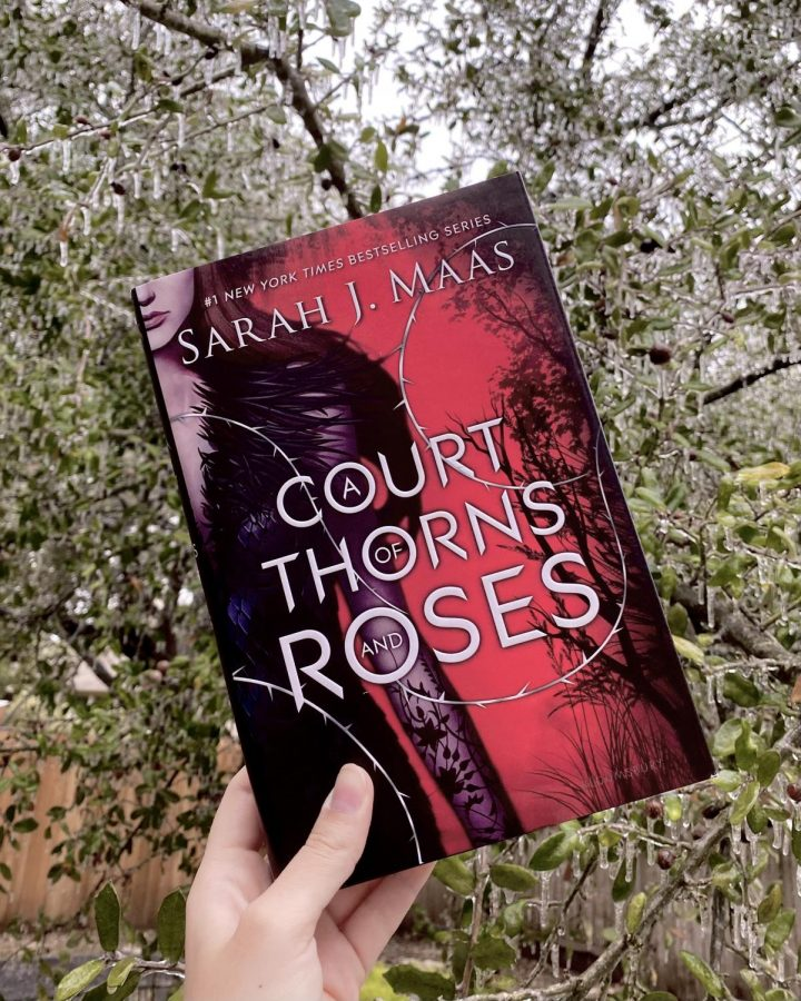 """A Court of Thorns and Roses"" Book Review"