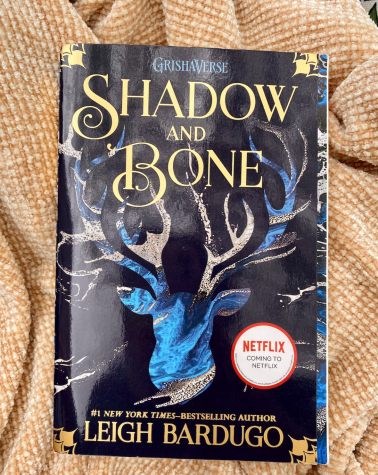 """Shadow and Bone"" by Leigh Bardugo published in 2013"