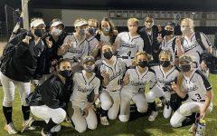 Lady Viper Softball